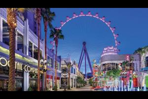 SHOPPING AT THE LINQ